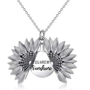 Silver You Are My Sunshine Necklace/Earring Set